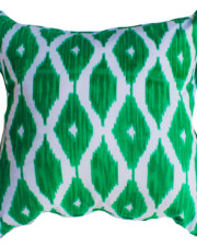 Green & White Ikat Interior Cushion