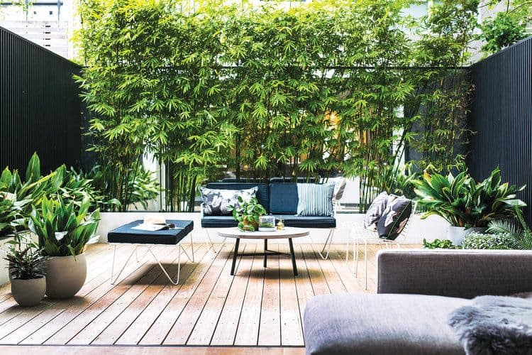 Outdoor Living Australia Urban Oasis (Adore Magazine)